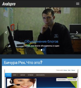 http://avalspro.ru